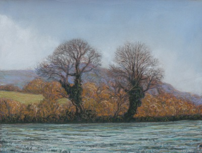 Two trees near Tutshill in                 frost